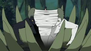 ~ 1° confronto da Akatsuki vs um receptáculo de Bijuu ~ 300px-Zetsu_dividing