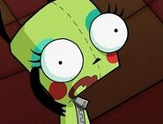 GIR makeup 1