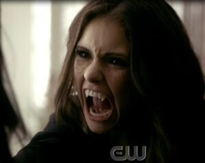 Tvd2-catherine-bonnie