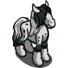 Irish Cob Foal-icon