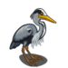 Gray Heron-icon