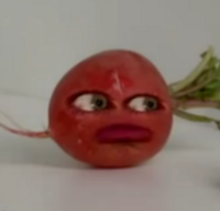Radish (season 3)