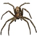 Item harmlessspider 01