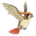 018Pidgeot.png