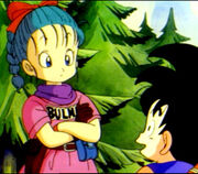 Goku&Bulma Dragon-Ball