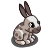 Brown Spot Rabbit-icon