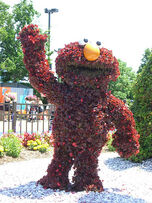 SesamePlaceTopiaries (7)