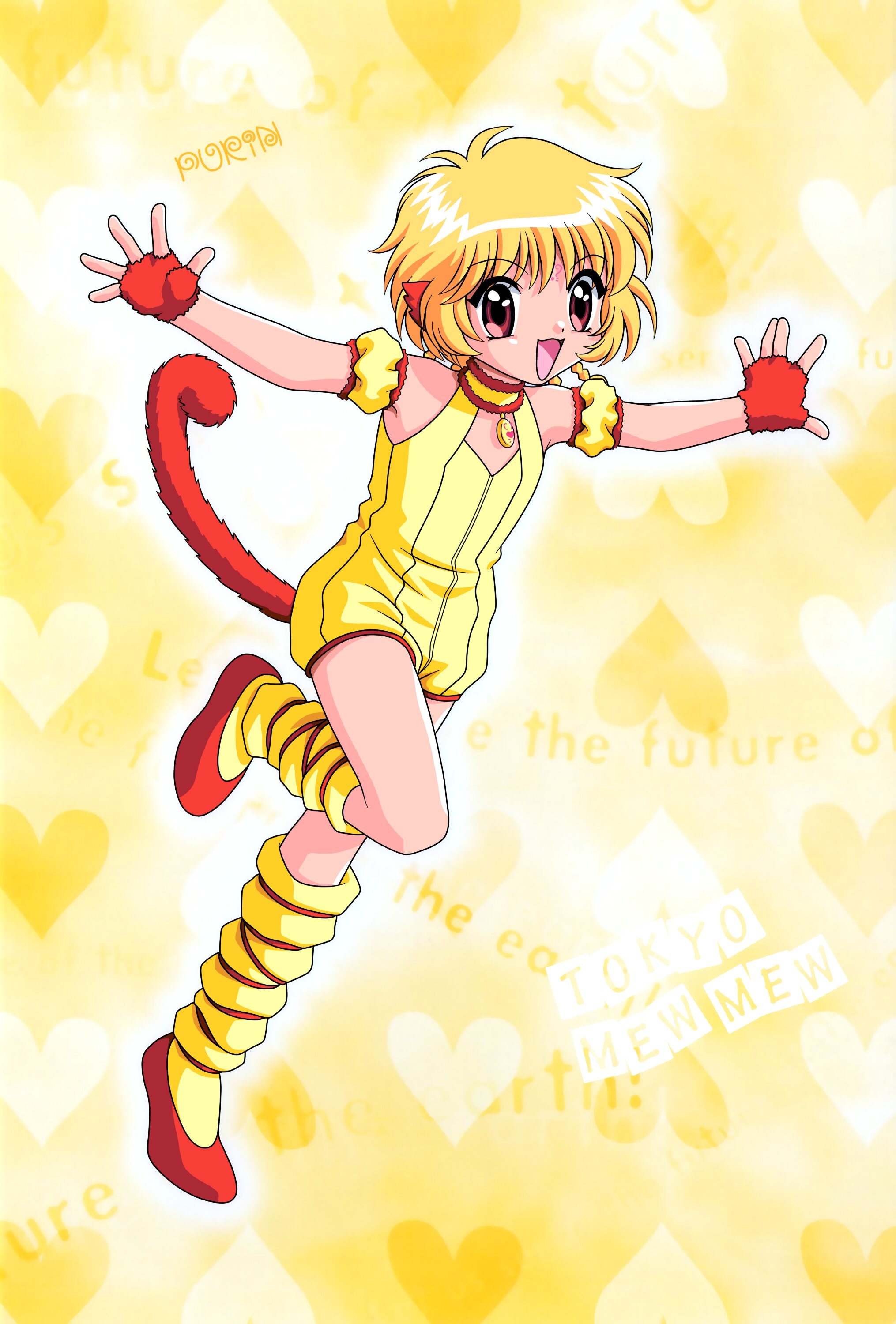 Pudding Fong Tokyo Mew Mew Fanon Wiki Fandom Powered