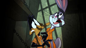 Looney103-4-600x337