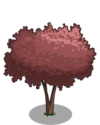 Cherry Plum Tree1-icon