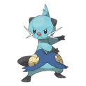 502Dewott