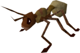 Giant ant worker