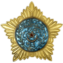 Order of the Red Star Bukhara Soviet Republic, 1 degree