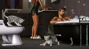 Sims3Pets2
