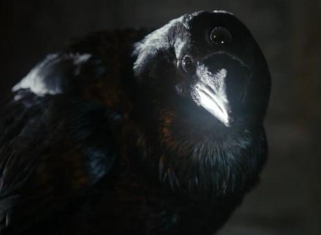 James Harris Three-eyed_raven