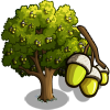 Cork Oak Tree-icon