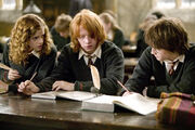 Hermione-granger-ron-weasley-harry-potter-hp4-study-6x4