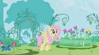 Fluttershy looking at the garden S1E3