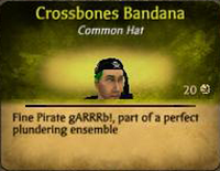 CrossbonesBandanaMale