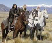 LOTRHorses