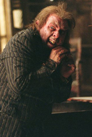Peter-pettigrew
