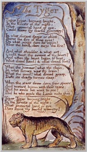 tyger as evil in william blakes The tyger by william blake tyger tyger burning bright in the forests of the night what immortal hand or eye could frame thy fearful symmetry in what distant deeps or skies burnt page.