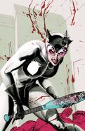 Catwoman Vol 4-3 Cover-3 Teaser