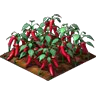 Crop Chili Peppers Grown SW Icon.png