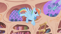 "Rainbow Dash ""I got the ticket"" 1 S01E03"