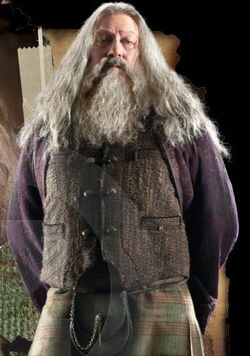 Abelforth Dumbledore 2