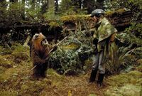 Ewok70