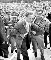 Mario-savio-greek