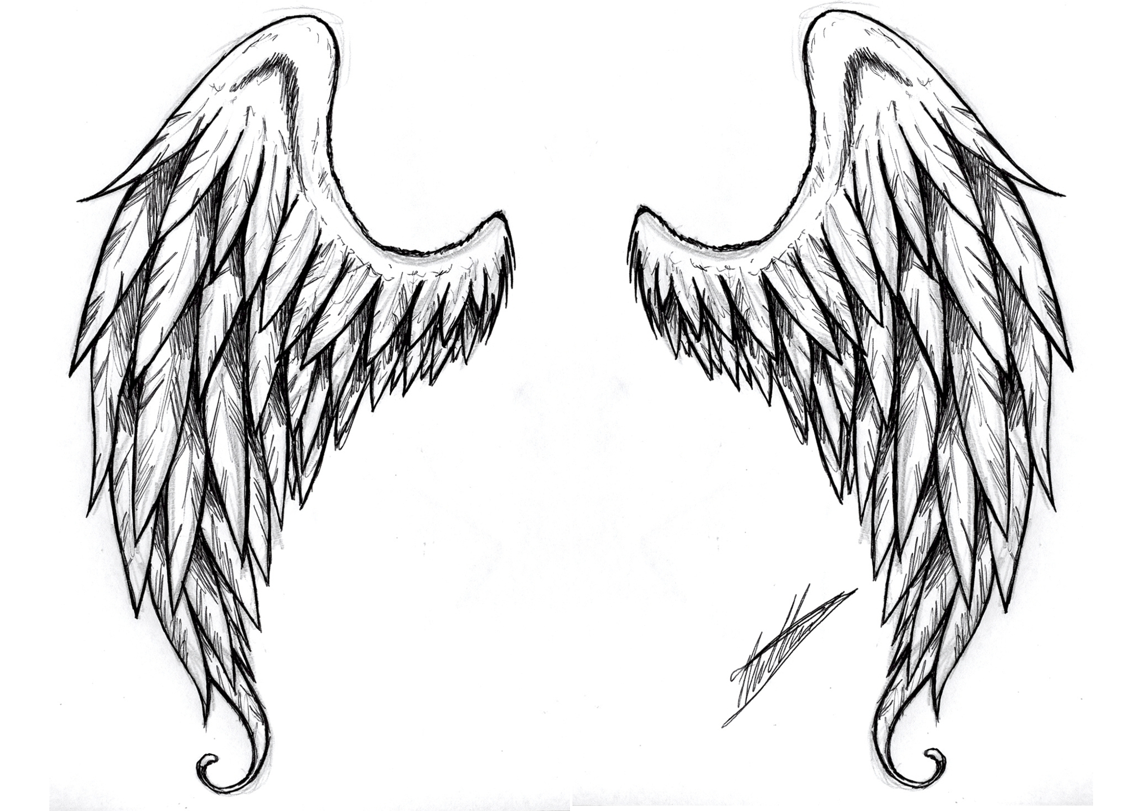 image angel and demon wings tattoos tattoo designs d v wonderpad wiki. Black Bedroom Furniture Sets. Home Design Ideas