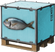 Fish Pallet