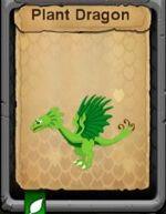 Plant dragon.jpg