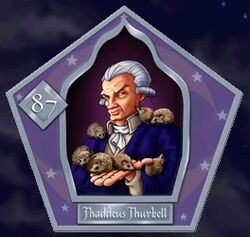 Thadée Thurkell - Chocogrenouille HP2