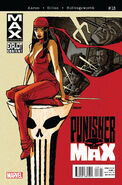 Punishermax Vol 1 18