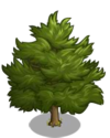 Eastern Red Cedar1-icon