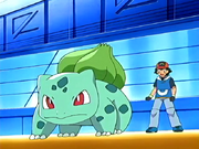 File-Ash and Bulbasaur