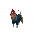 Carter Caninenimus Gnome.png