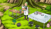 Cilan cooking Pokemon Food