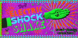 ElectricShockShakeBox