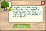 Yellow Passion Fruit Tree Growth Message