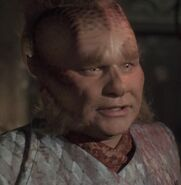 Neelix illusion 2376