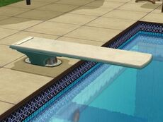 TS2 diving board
