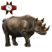 Item rhinoceros 01