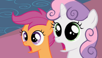 Scootaloo &amp; Sweetie Belle Shock S2E6