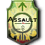 Iw5 cardicon assault class