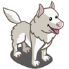 White Husky-icon