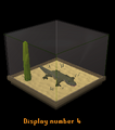 Lizard display.png
